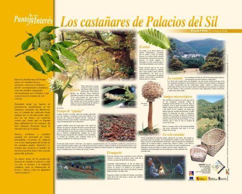 PINCastañaresPalaciosSil