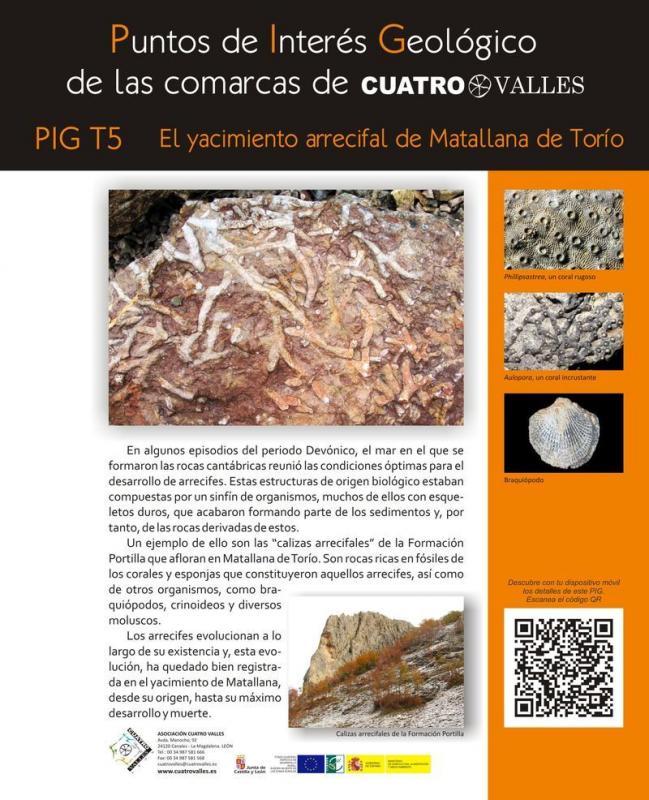 El yacimiento arrecifal de Matallana de Torío